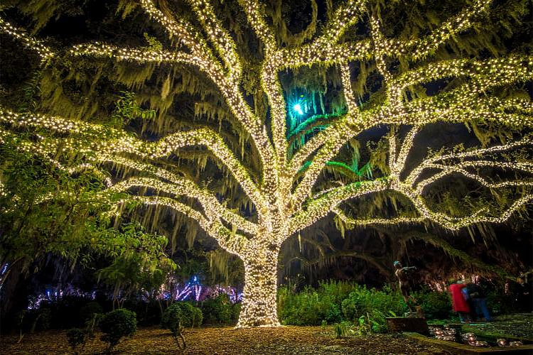 The Seven Can't-Miss Holiday Events in Myrtle Beach of 2019